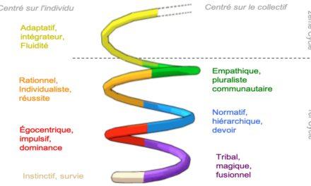 Introduction à la Spirale Dynamique Intégrale